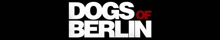 DOGSOFBERLIN